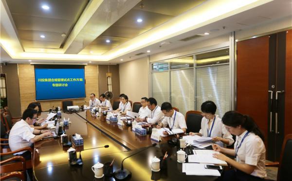 集团公司召开合规管理试点工作方案专题研讨会